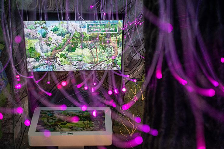 Создание детской игровой зоны (детской площадки) Визит-центра Национального парка «Кисловодский».